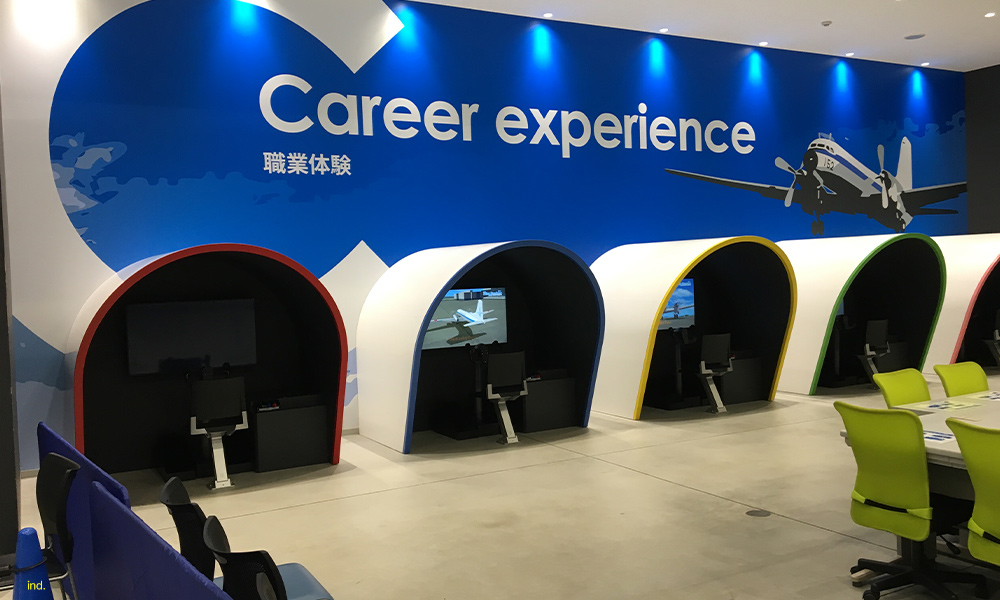 Career Experience