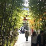 熱海おすすめ観光スポット來宮(きのみや)神社