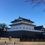 徳川家康の愛した場所、駿府城公園を効率よく回るルート